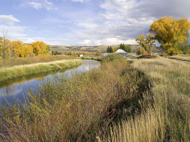 A mix of fall colors in the wetlands and Cottonwood groves of the Yampa River basin on The Nature Conservancy's Carpenter Ranch, west of Steamboat Springs, Colorado.