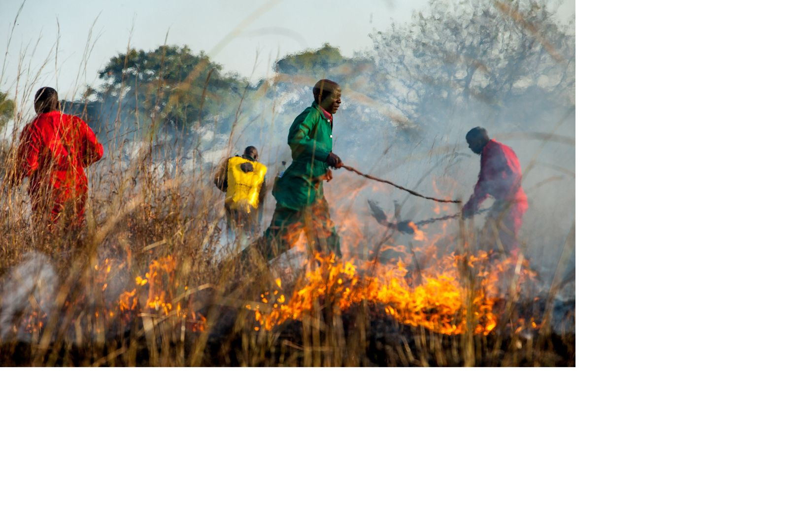 Participants carry out a prescribed 'black line' burn as part of practical exercise during fire management training in Kafue National Park, Zambia.