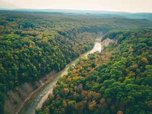 An aerial view of Zoar Valley forests and a river.