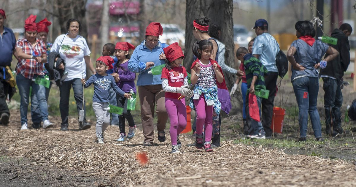 Volunteers plant trees in Chicago.