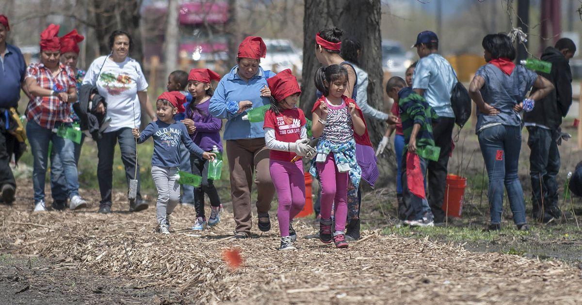 Volunteers plant trees in Chicago.