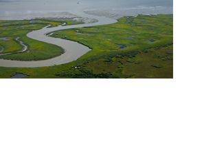 Aerial view of Bristol Bay.