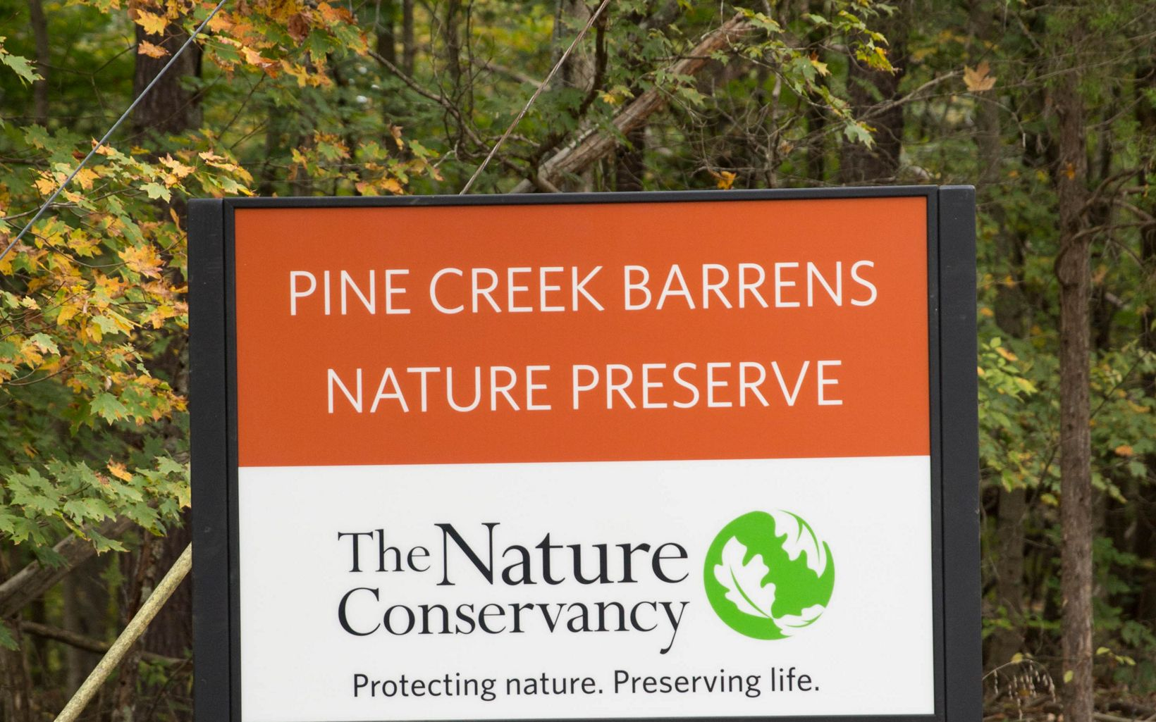 Sign for Pine Creek Barrens Nature Preserve