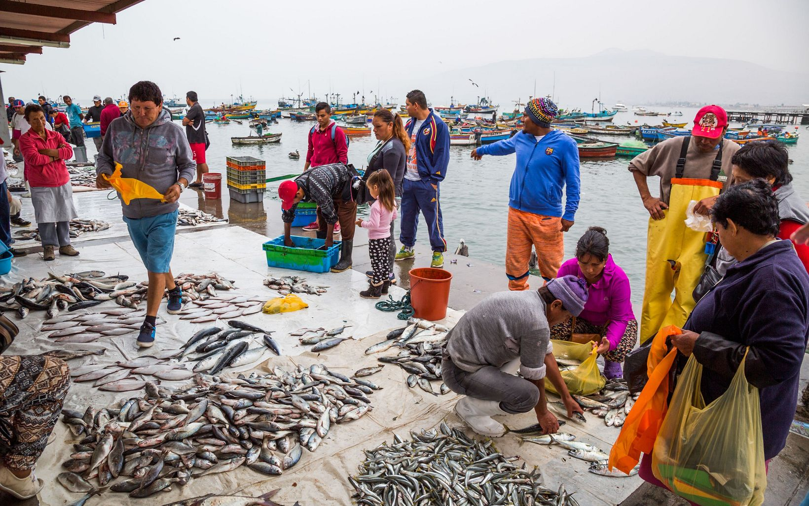 in Ancón, Peru. Ancón has thousands of years of history harvesting food from the sea and is working together as a community to make their practices as responsible as possible.