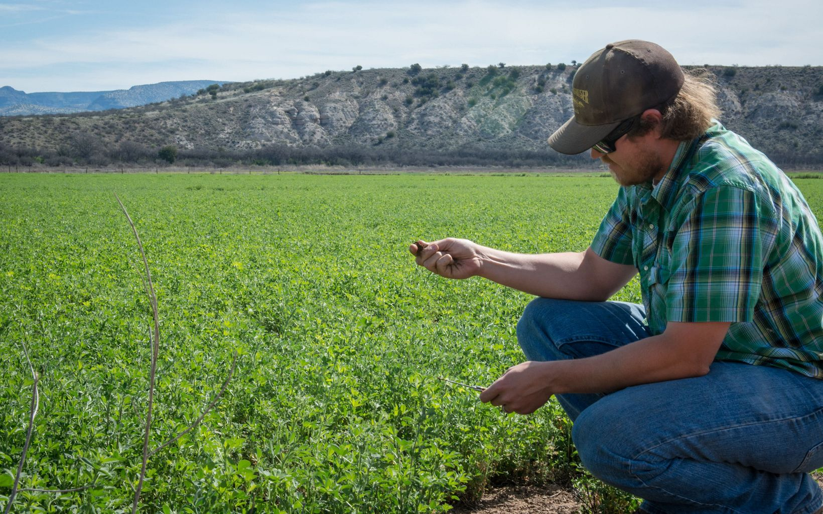 TNC is working with him and other farmers in the Verde Valley to increase the efficiency of their irrigation systems and enhance flows in the Verde River.