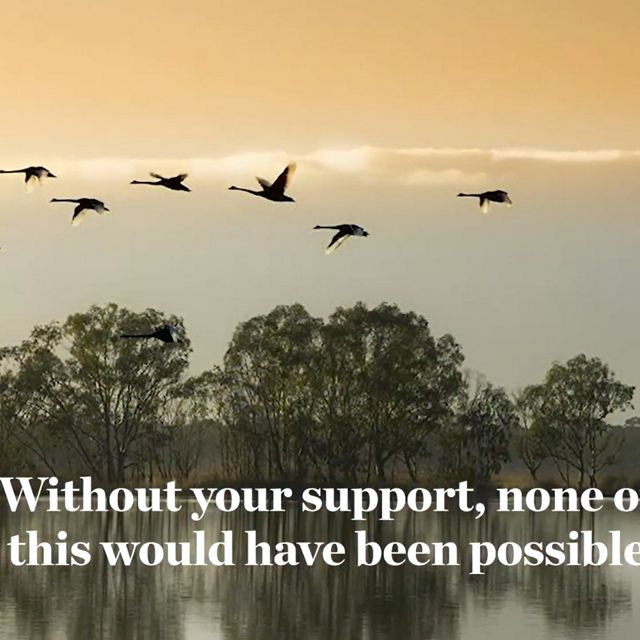 TNC supporters helped achieved so much for nature