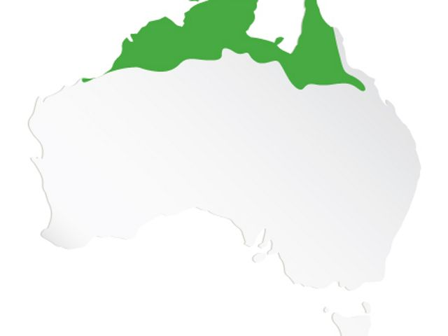TNC's work supporting Indigenous partners across Northern Australia