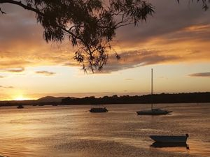 Noosa lower, Queensland © Craig Bohm / TNC