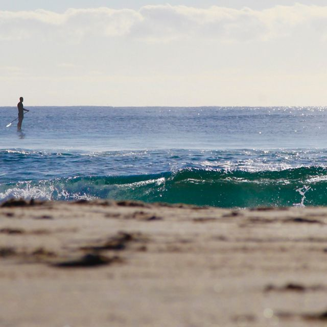 Paddle boarder at Adelaide beach by Anita Nedosyko / TNC