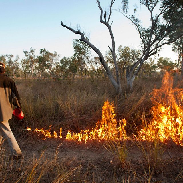 An early dry-season controlled burn being conducted by local aboriginal rangers on Fish River Station in Australia's Northern Territory.