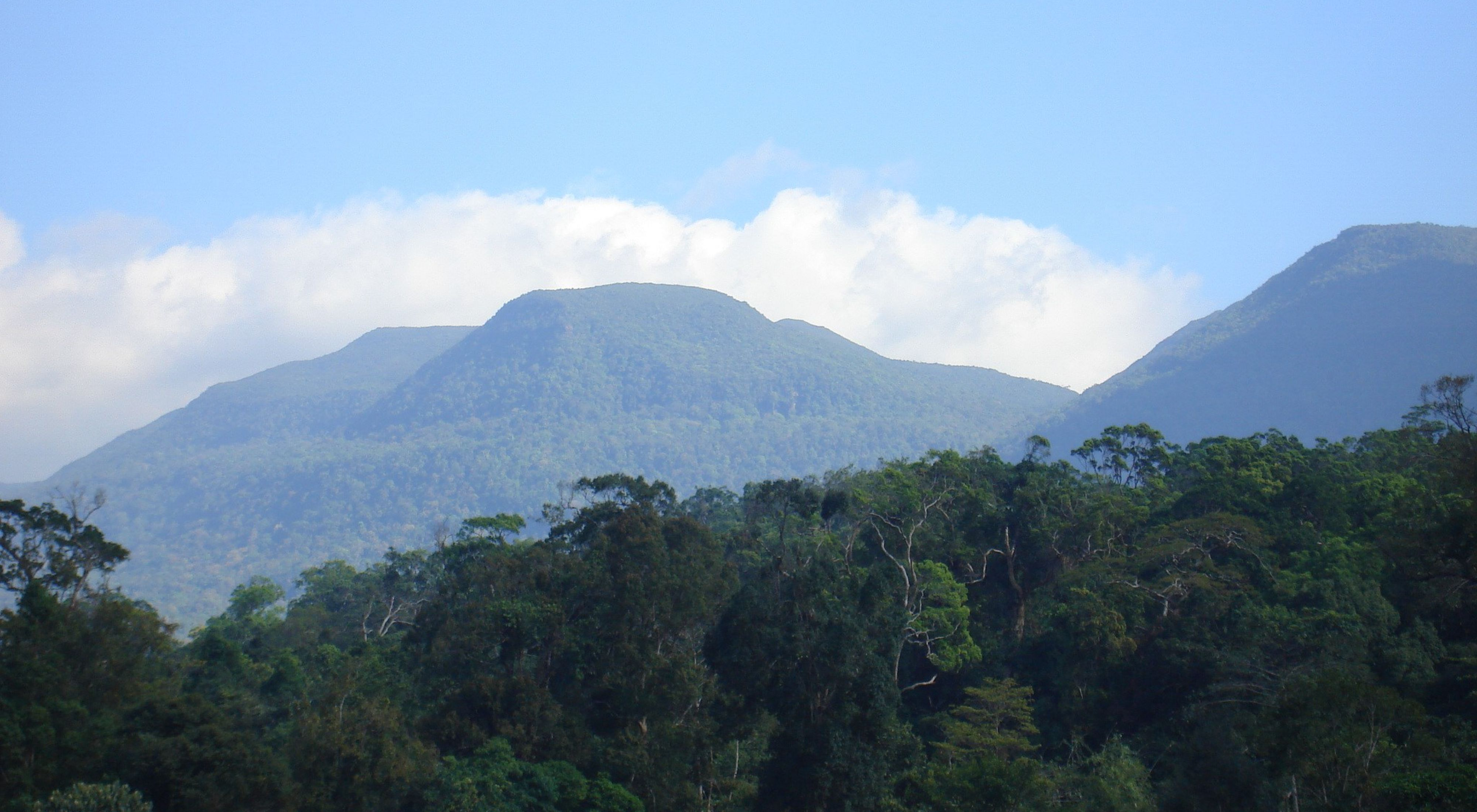 jungle mountains under a blue sky