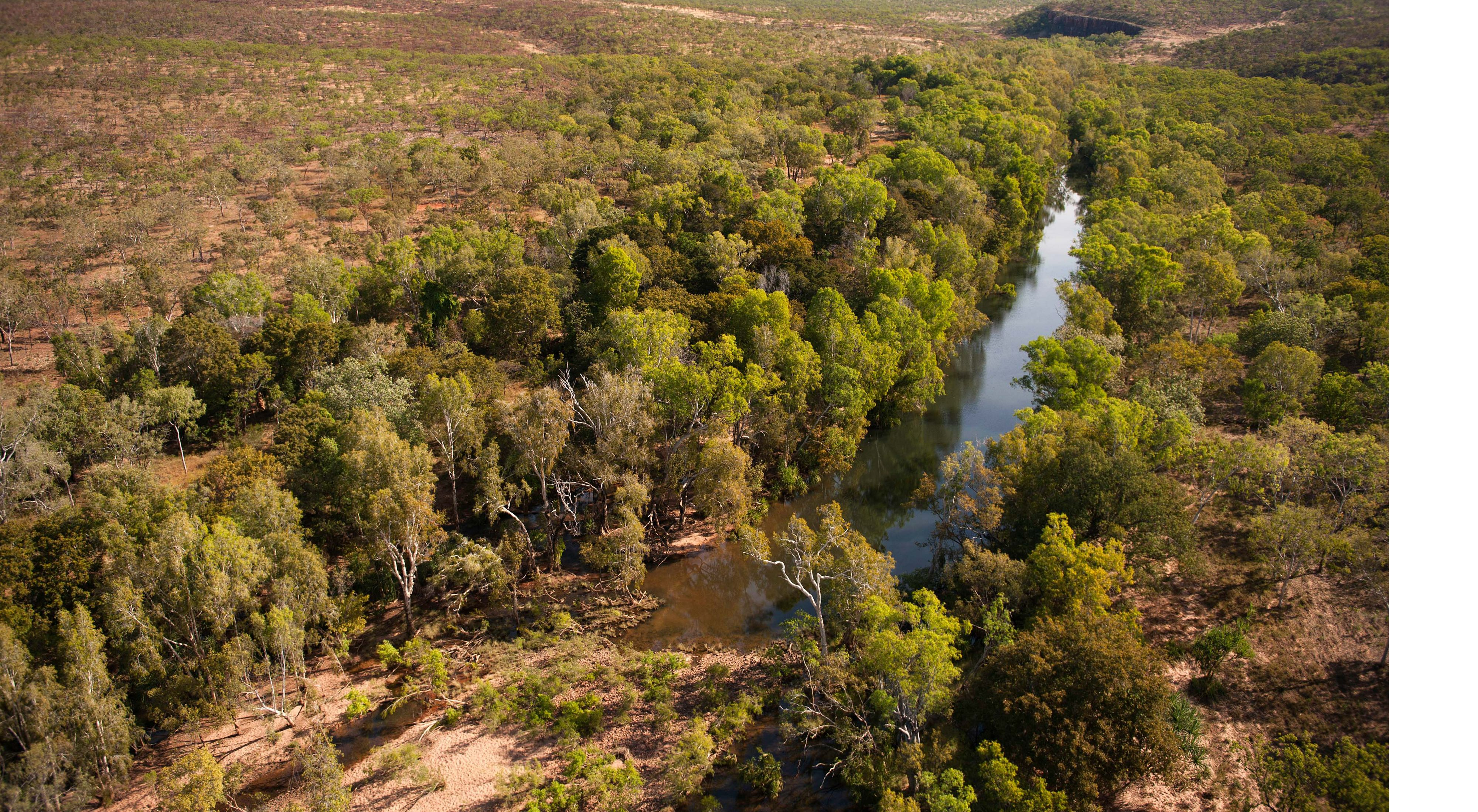 is home to a plethora of unique species and some of the world's oldest human artwork, this area is ecologically, socially and culturally vital for Australia.
