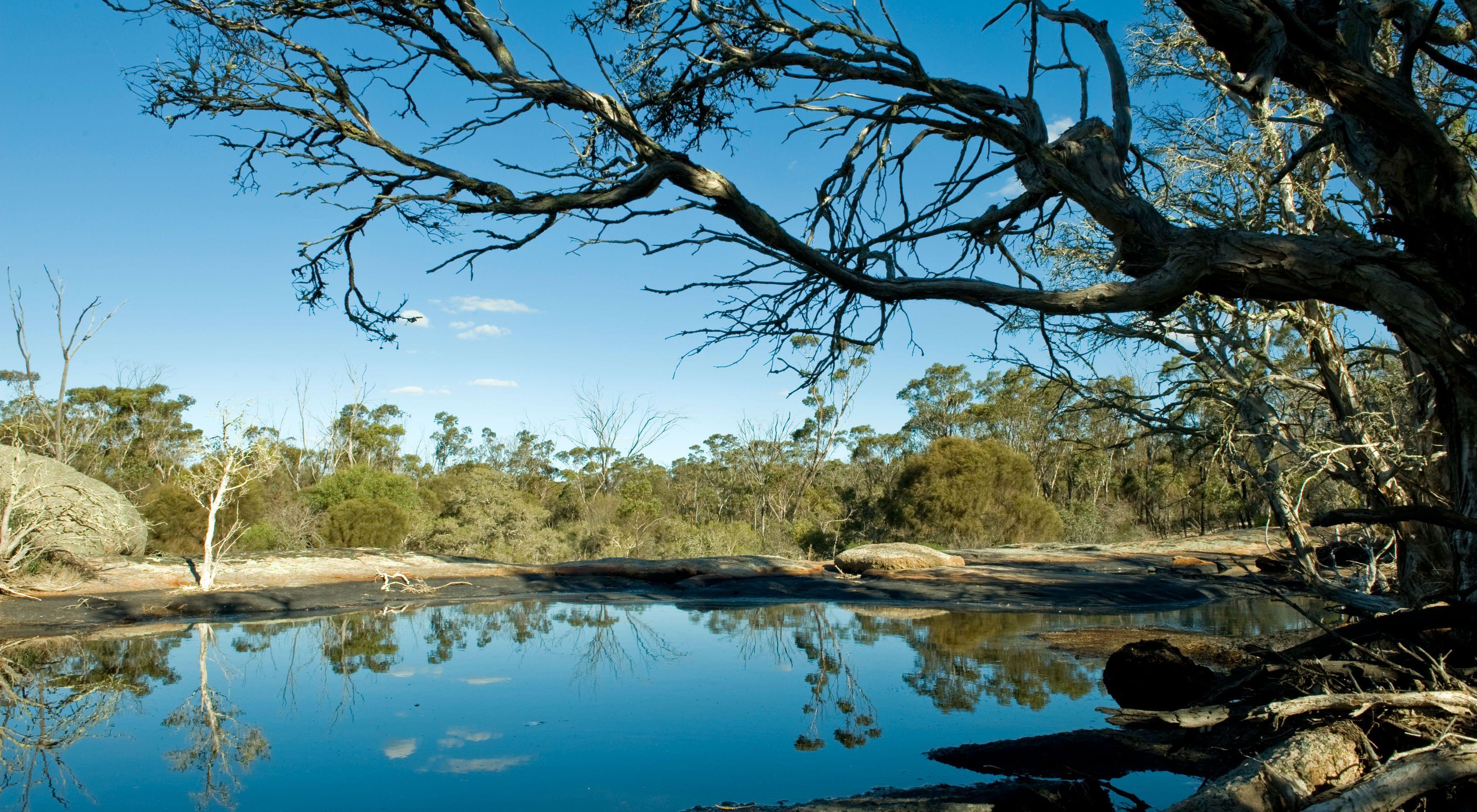 Gondwana Link, Western Australia