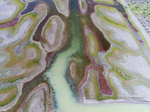 Gayini wetlands from the air