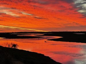 Sunset at Gayini