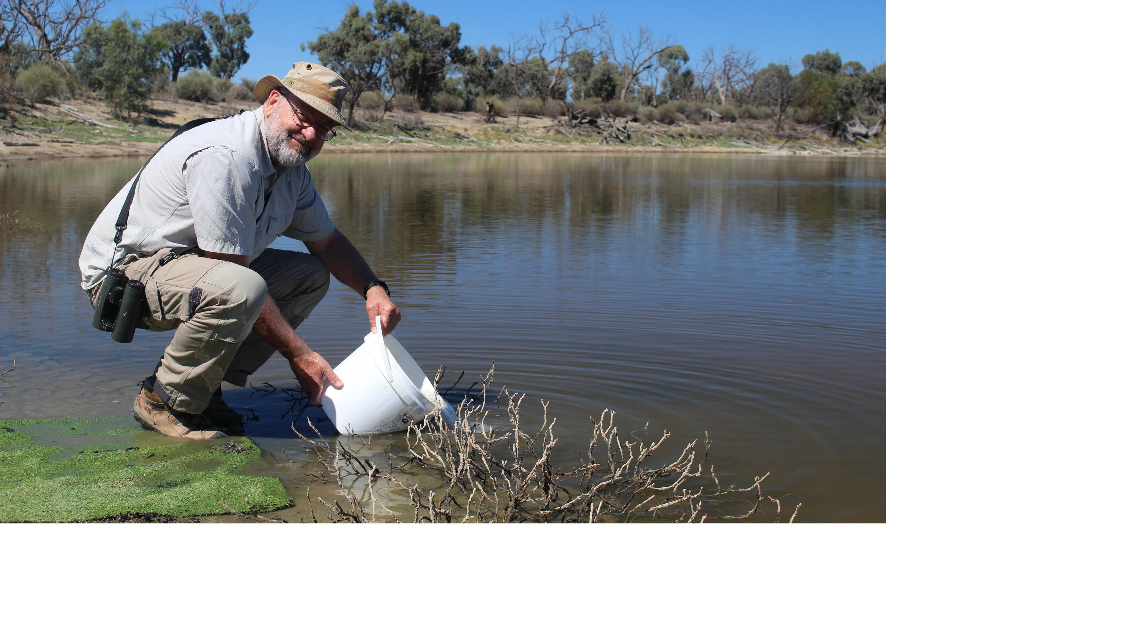 Murray Darling Wetlands Working Group Chair