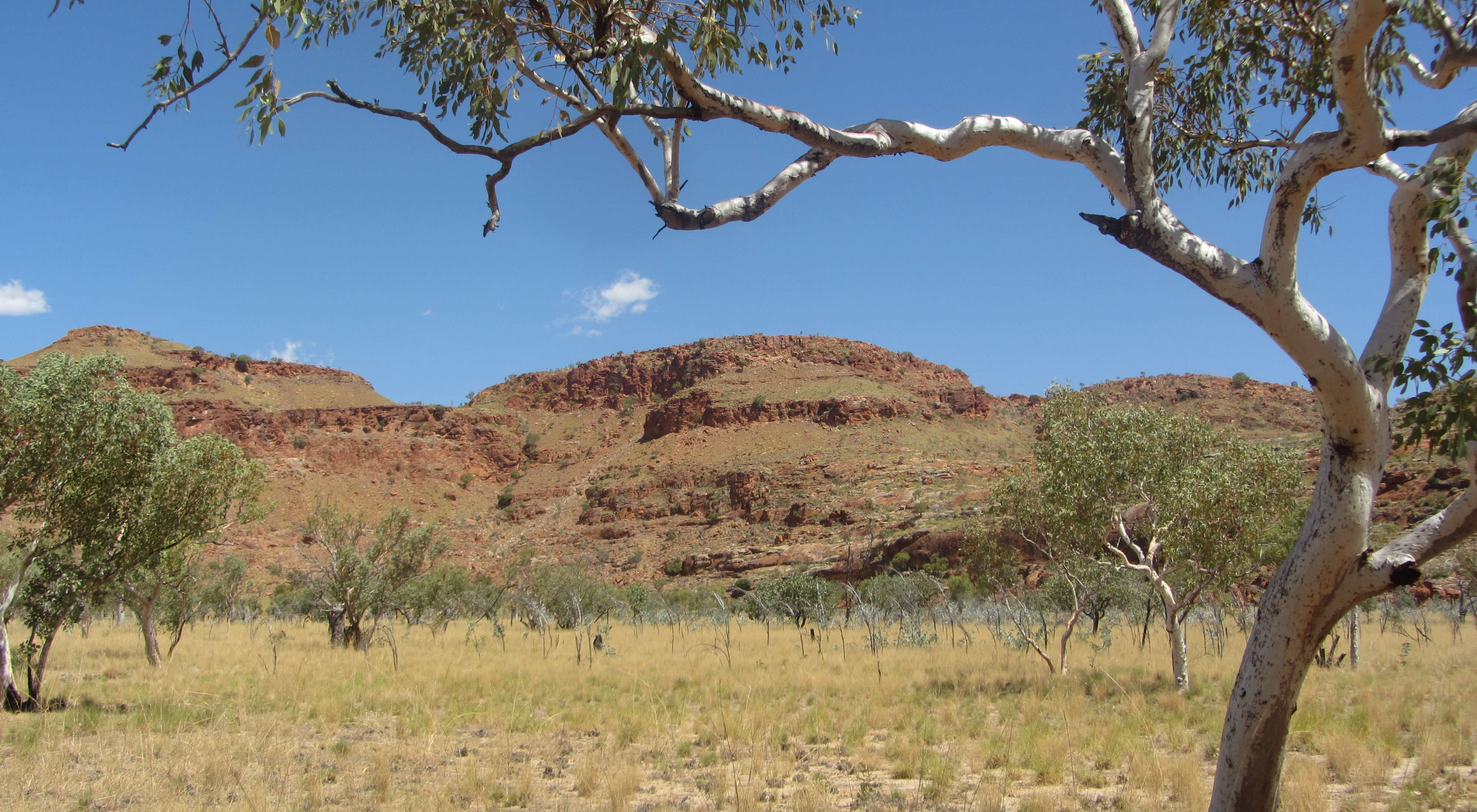 in the Kimberley region of far north Western Australia