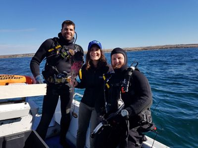 monitoring our restored shellfish reef in South Australia