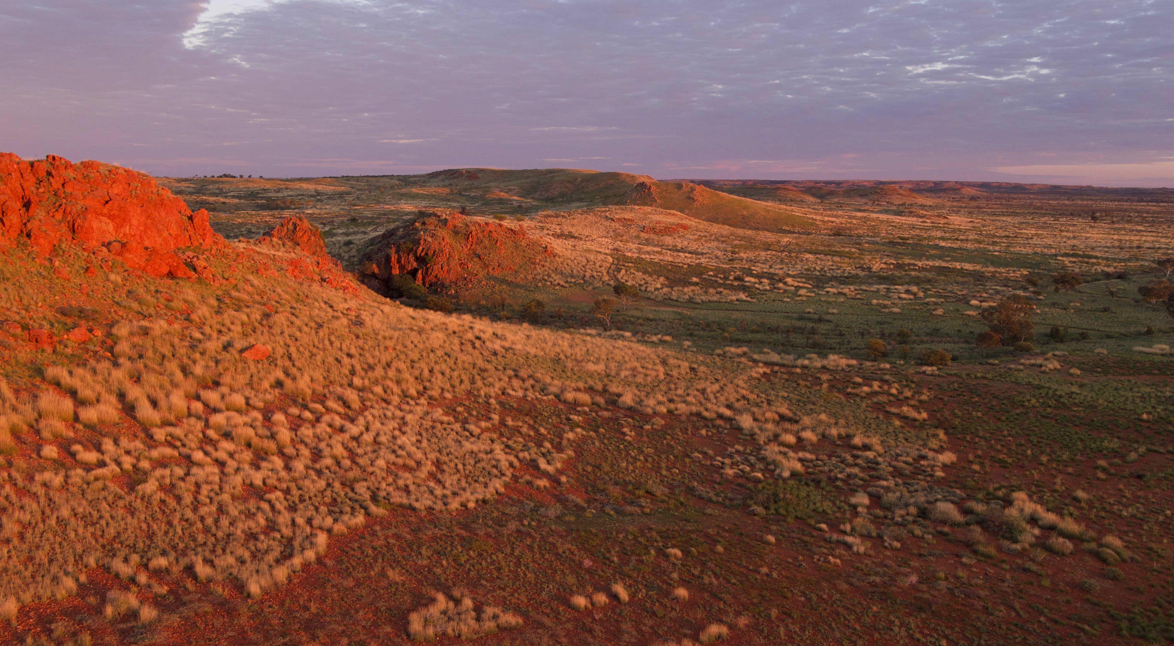in Western Desert, Western Australia