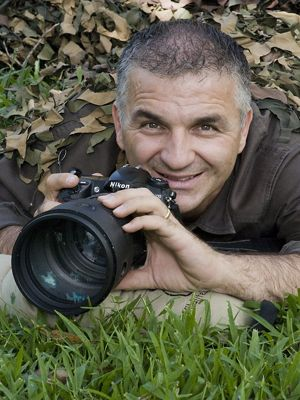 Michael Snedic, Wildlife and Nature Photographer