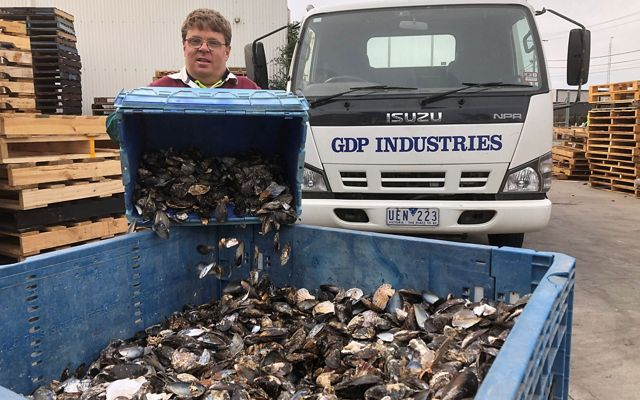 recycling shells for Shuck Don't Chuck
