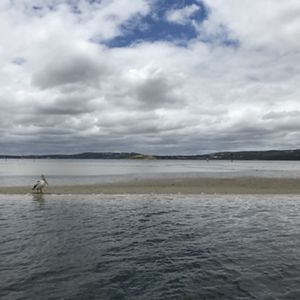 Oyster Harbour, WA