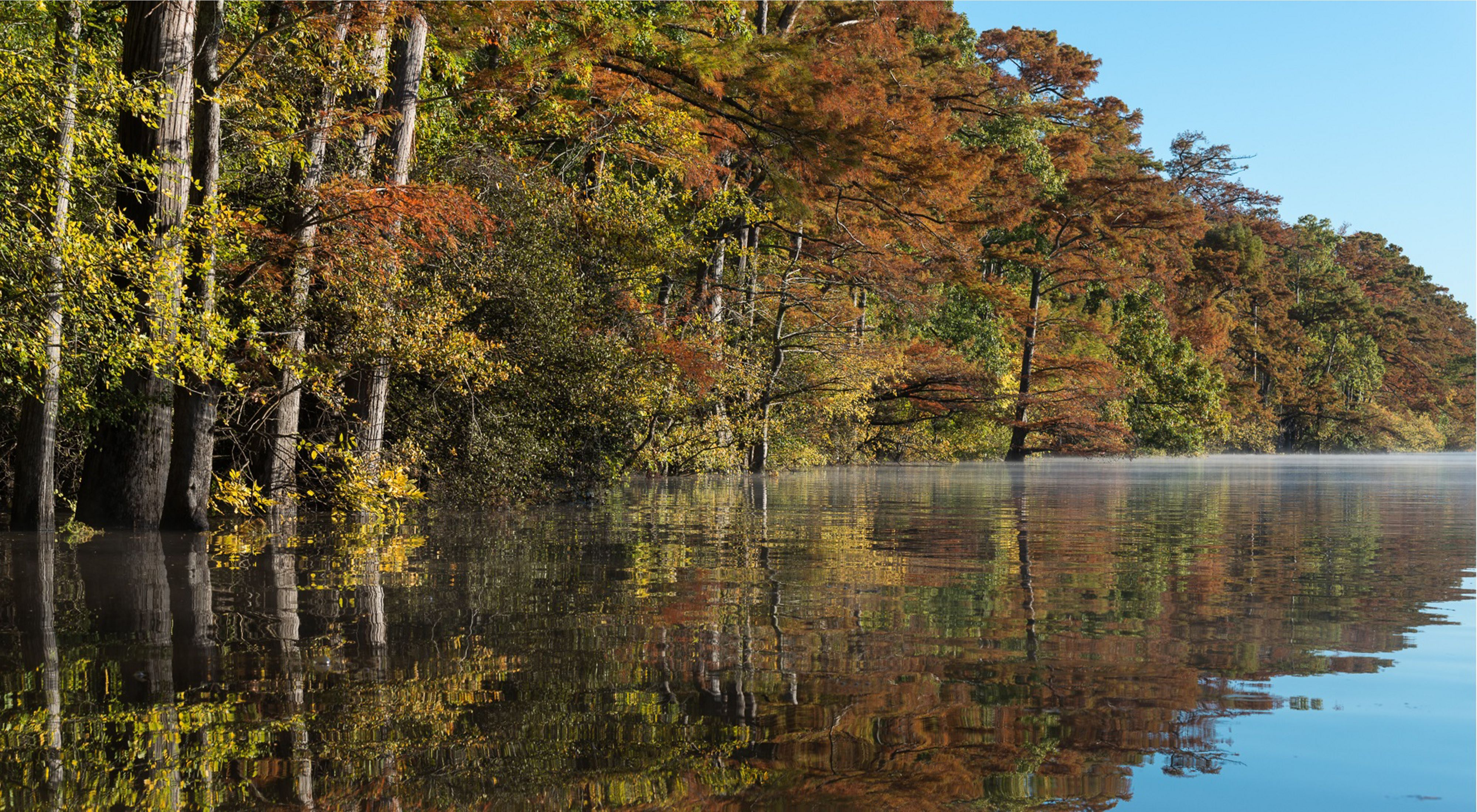 Fall colors brighten the banks of Bayou Dorcheat, one of Louisiana's designated scenic rivers