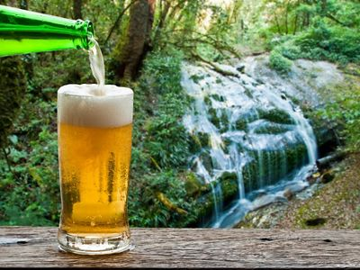 Beer glass sits on a table next to a waterfall.