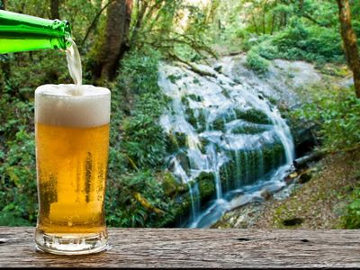A beer being poured into a glass by a waterfall.