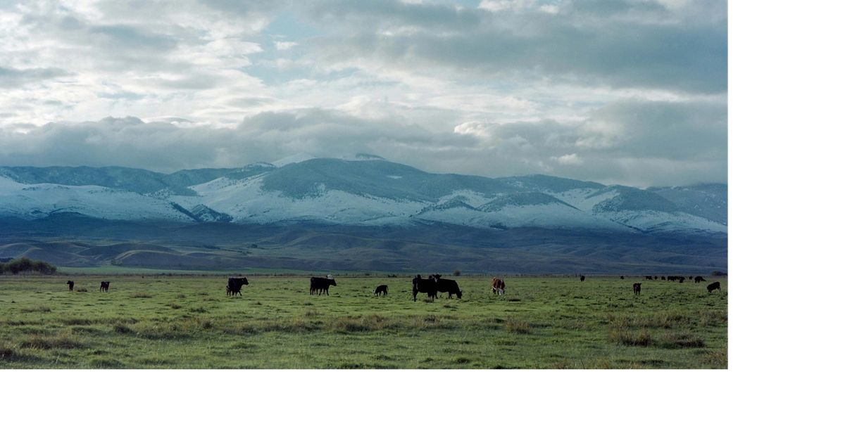 The Montana valley is known for its trophy big game, blue ribbon fishing and stunning mountain vistas.