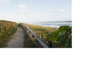 A dune trail at The Nature Conservancy's Blowing Rocks Preserve on Jupiter Island, Florida.