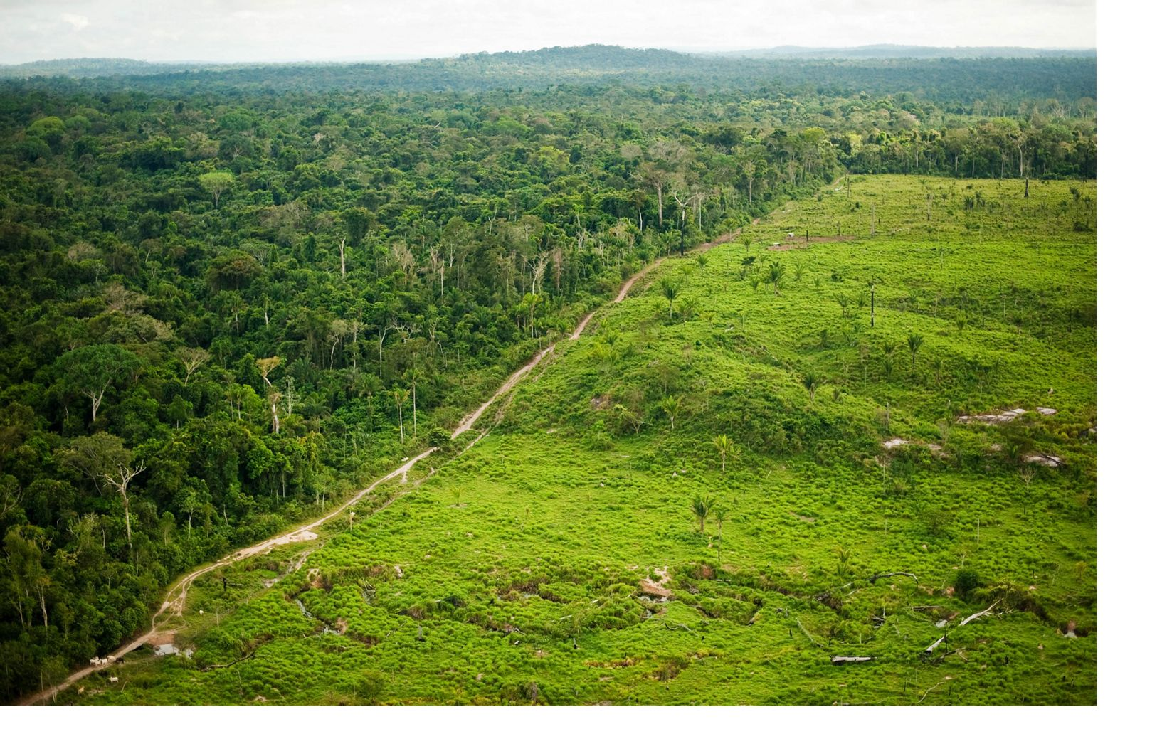An aerial view showing deforestation for cattle ranching at São Félix do Xingu,