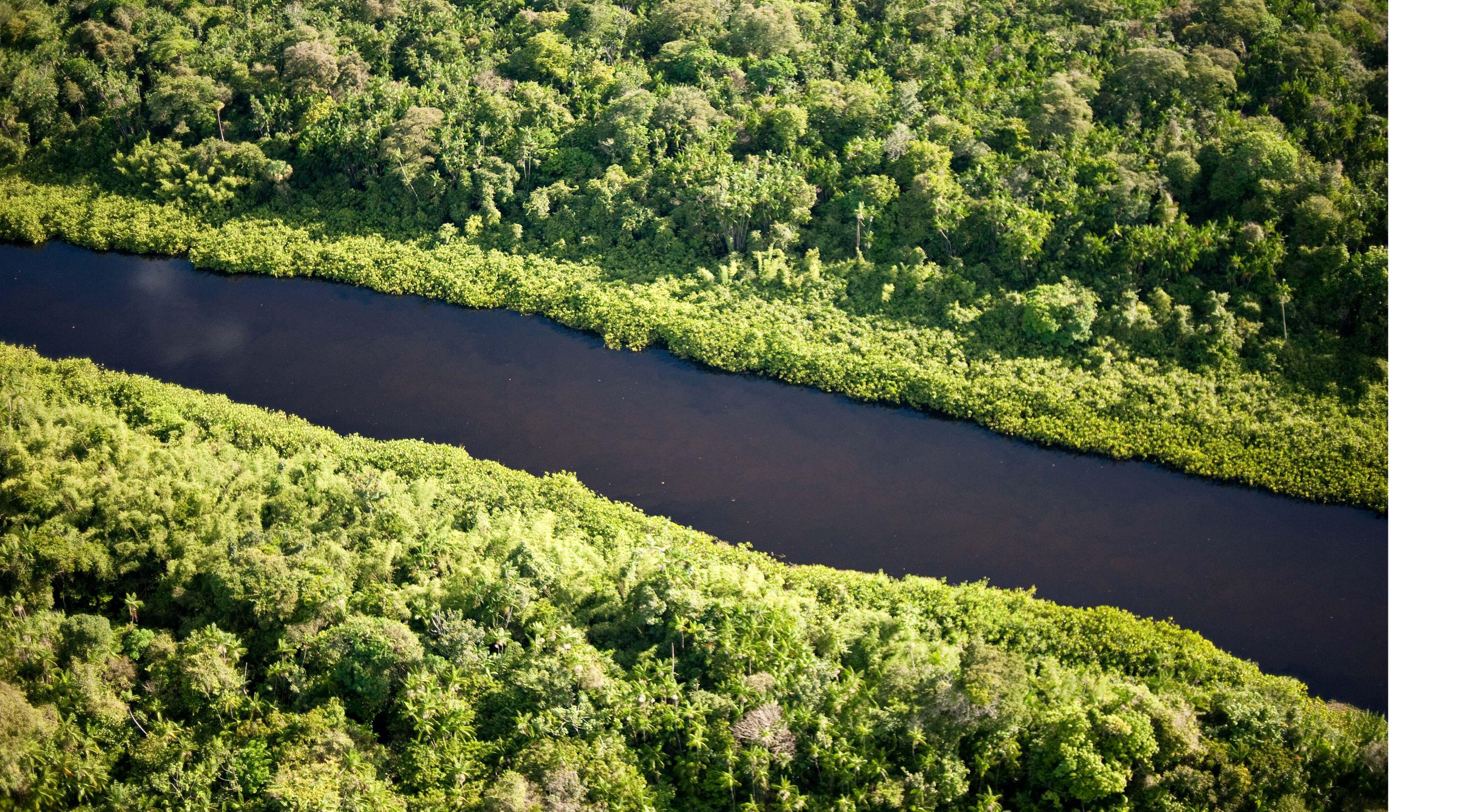 Vista aérea da extensa região indígena Oiapaque na Amazônia, Brasil.