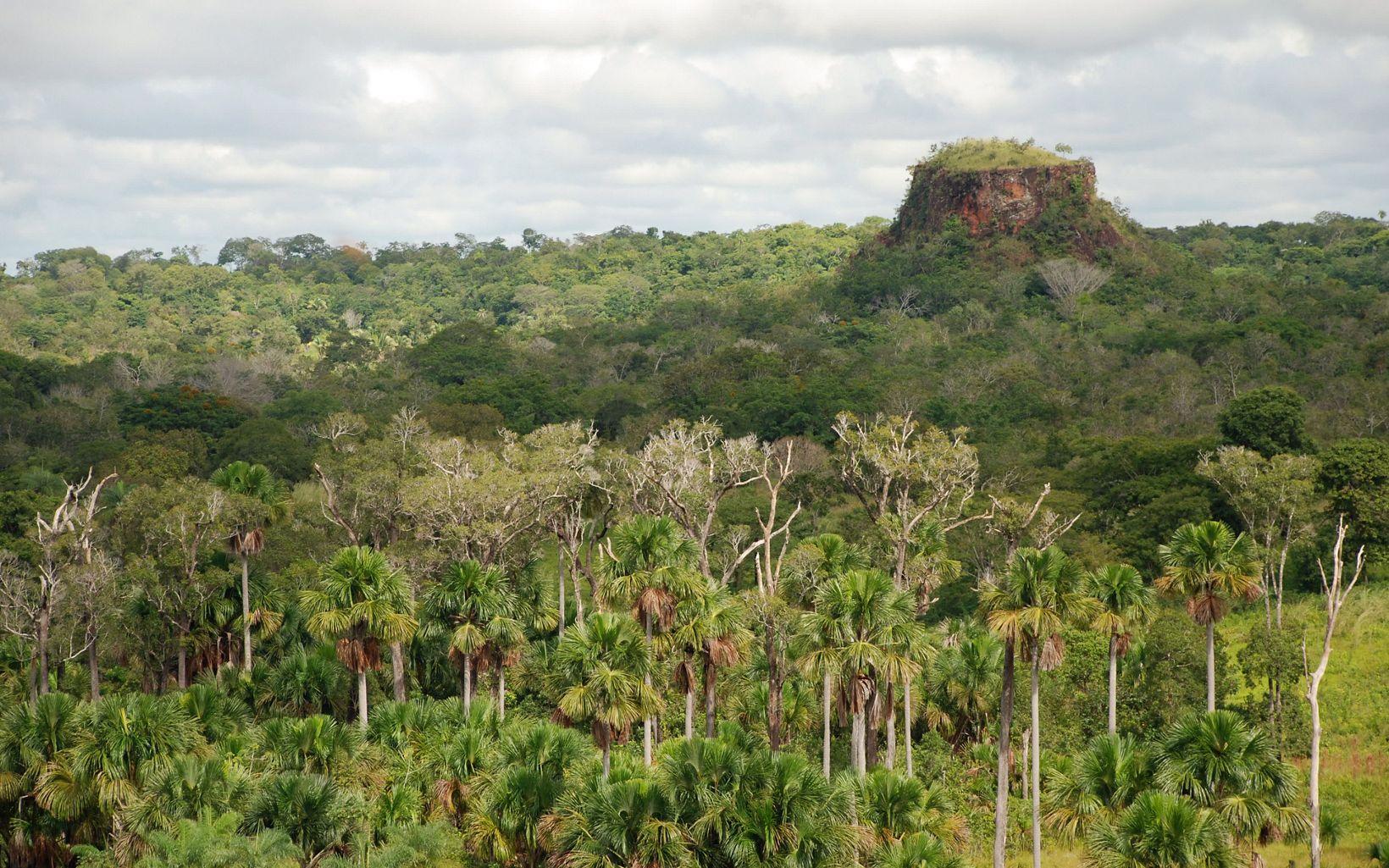 A vegetação peculiar e as formações rochosas são características bem específicas da região.