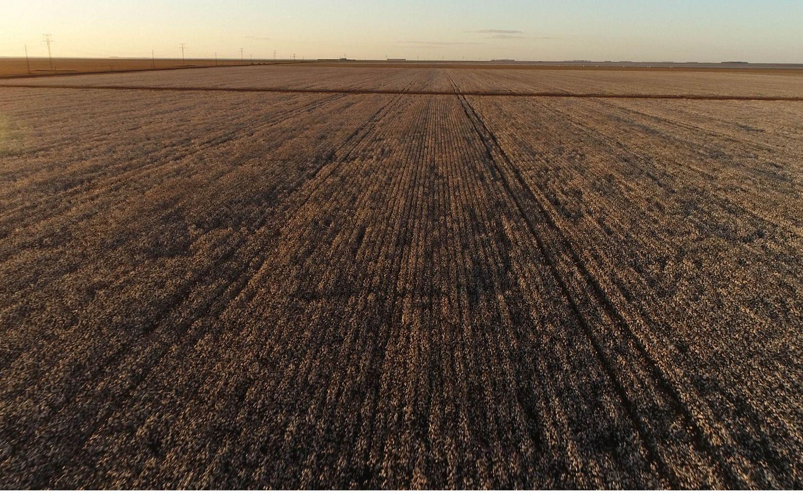 As paisagens planas são um bom terreno para desenvolvimento da agricultura.