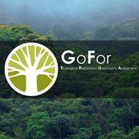 Logo GoFor