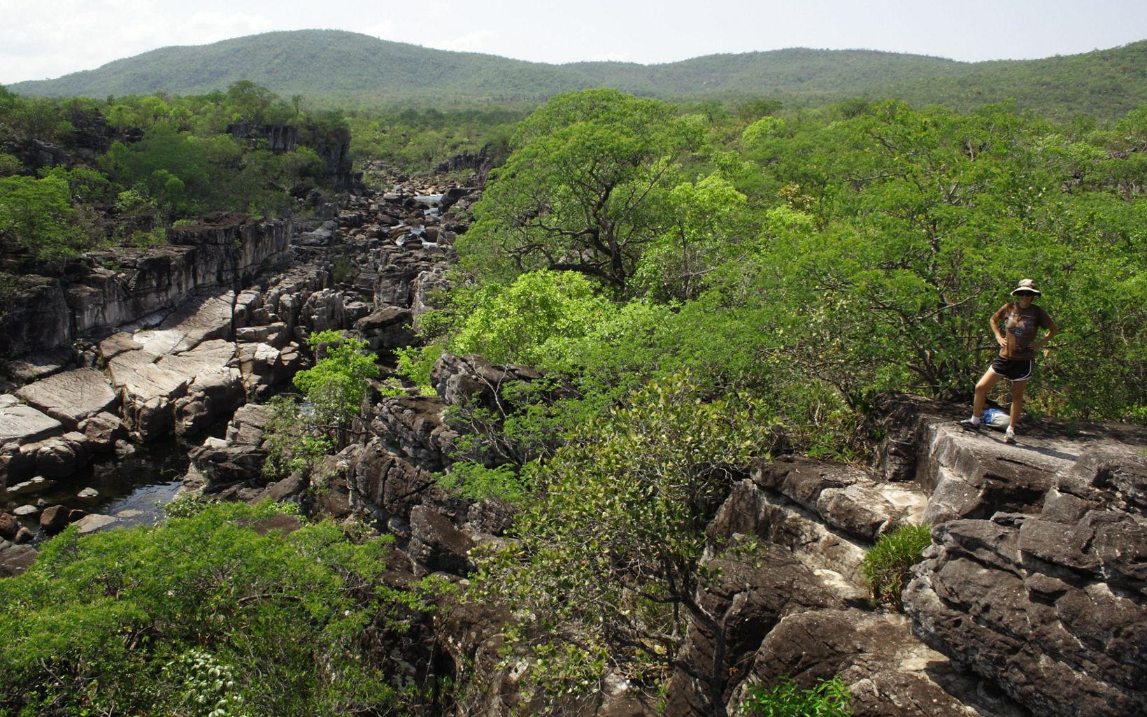 Canyon carved by the Rio Preto in Chapada dos Veadeiros National Park, Goiás State, Brazil.
