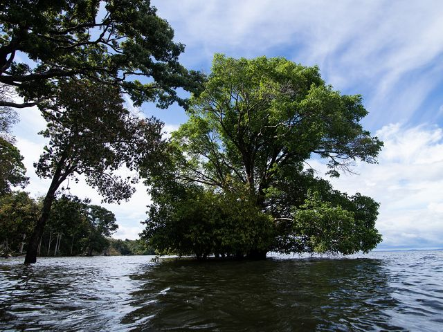 Bacia do Tapajós - Amazônia