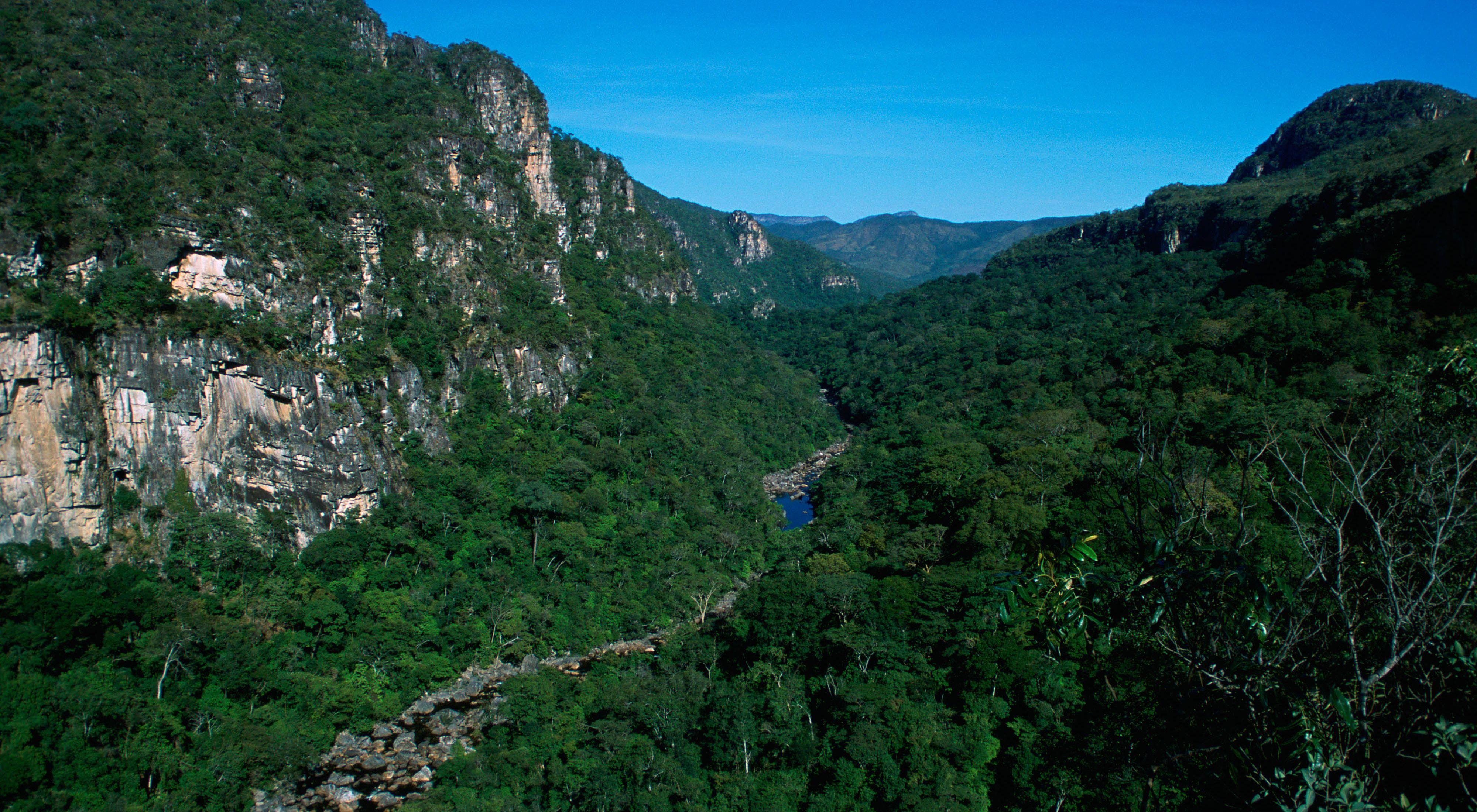vistas de Brasil