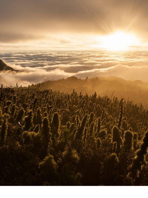Por do Sol no Pico Caratuva, a segunda maior montanha do sul do Brasil, no Paraná.
