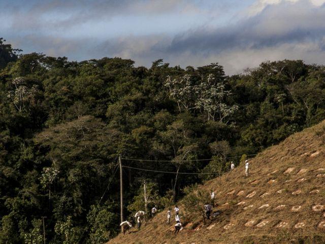 Para aumentar a escala da restauração florestal é preciso trabalhar em parceria com organizações e governos locais, mostrando os benefícios para a população e produtores.