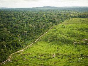 Image aérea de fronteira entre área protegida e área de produção.