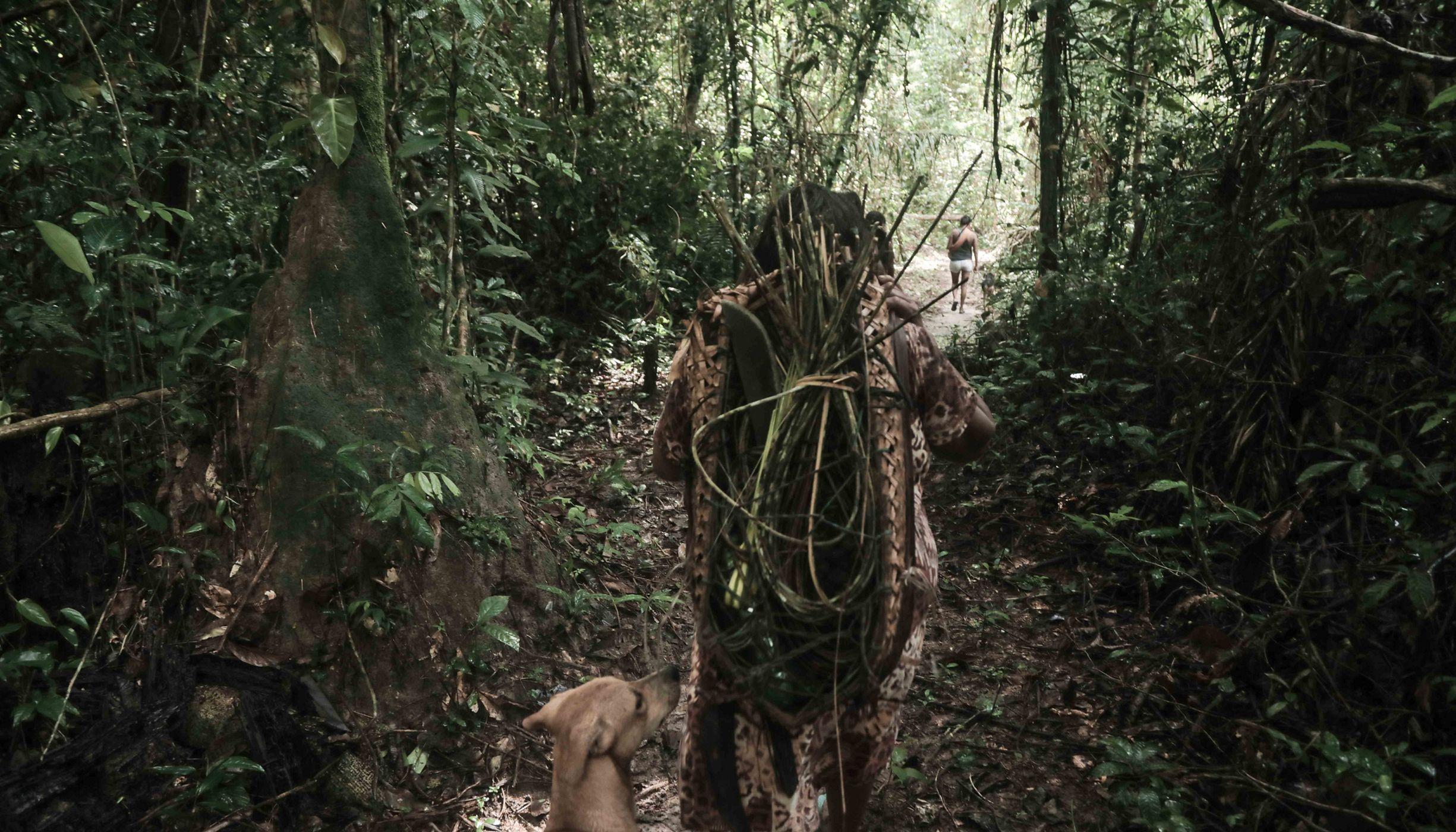 Indígena caminhando na floresta com ferramentas tradicionais.