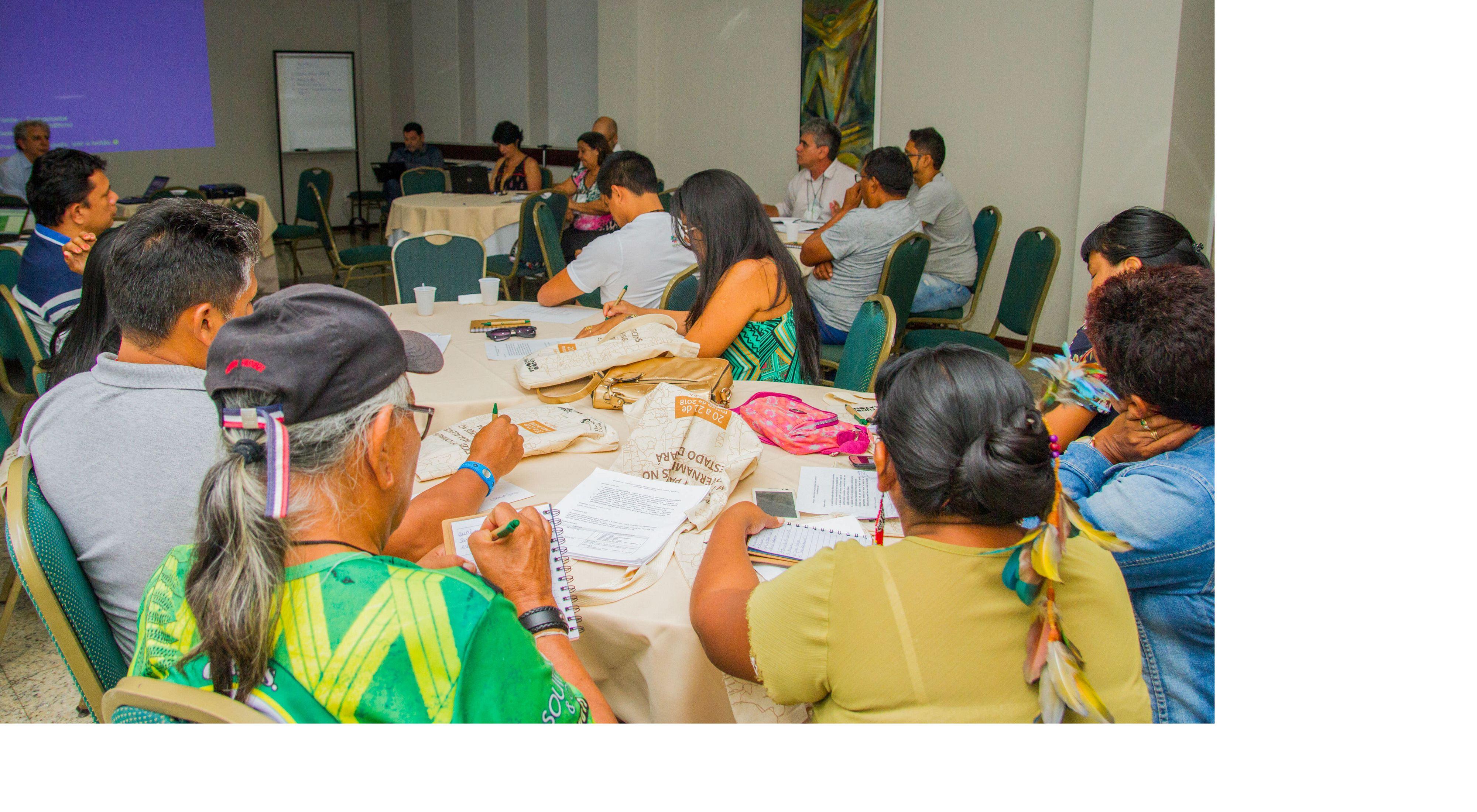 Oficina sobre PNGATI para agentes governamentais e FEPIPA no Pará