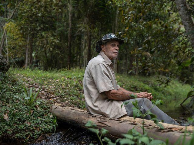 Itamar da Silva sentado em córrego ao lado de área de plantio em sistemas agroflorestais, com espécies frutíferas junto a árvores de grande porte nativas da Mata Atlântica.