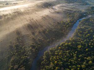 Margem de rio preservada
