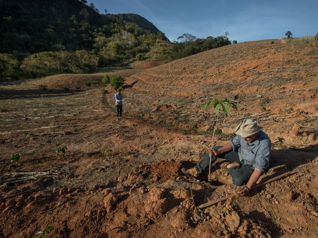 O agricultor Adolfo Litting, restaurando a propriedade rural da família, que hoje trabalha com plantio em sistemas agroflorestais em Afonso Cláudio, no Espírito Santo.