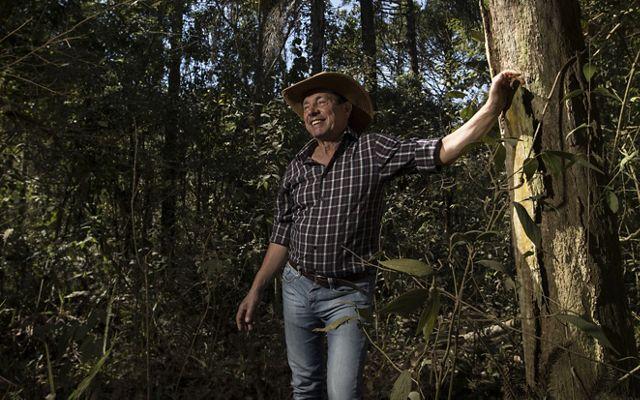 Rubens Carbone, proprietário rural de Extrema-MG, começou a restaurar a floresta por conta própria, e depois, foi um dos primeiros a integrar o projeto Conservador das Águas.