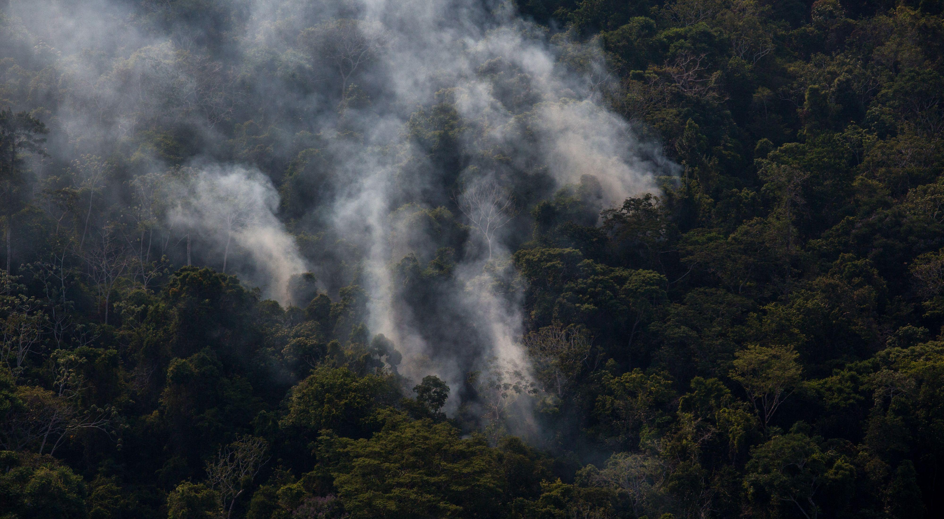 Incêndio em floresta próximo ao Rio Tapajós, em Santarém-PA, no ano de 2017.
