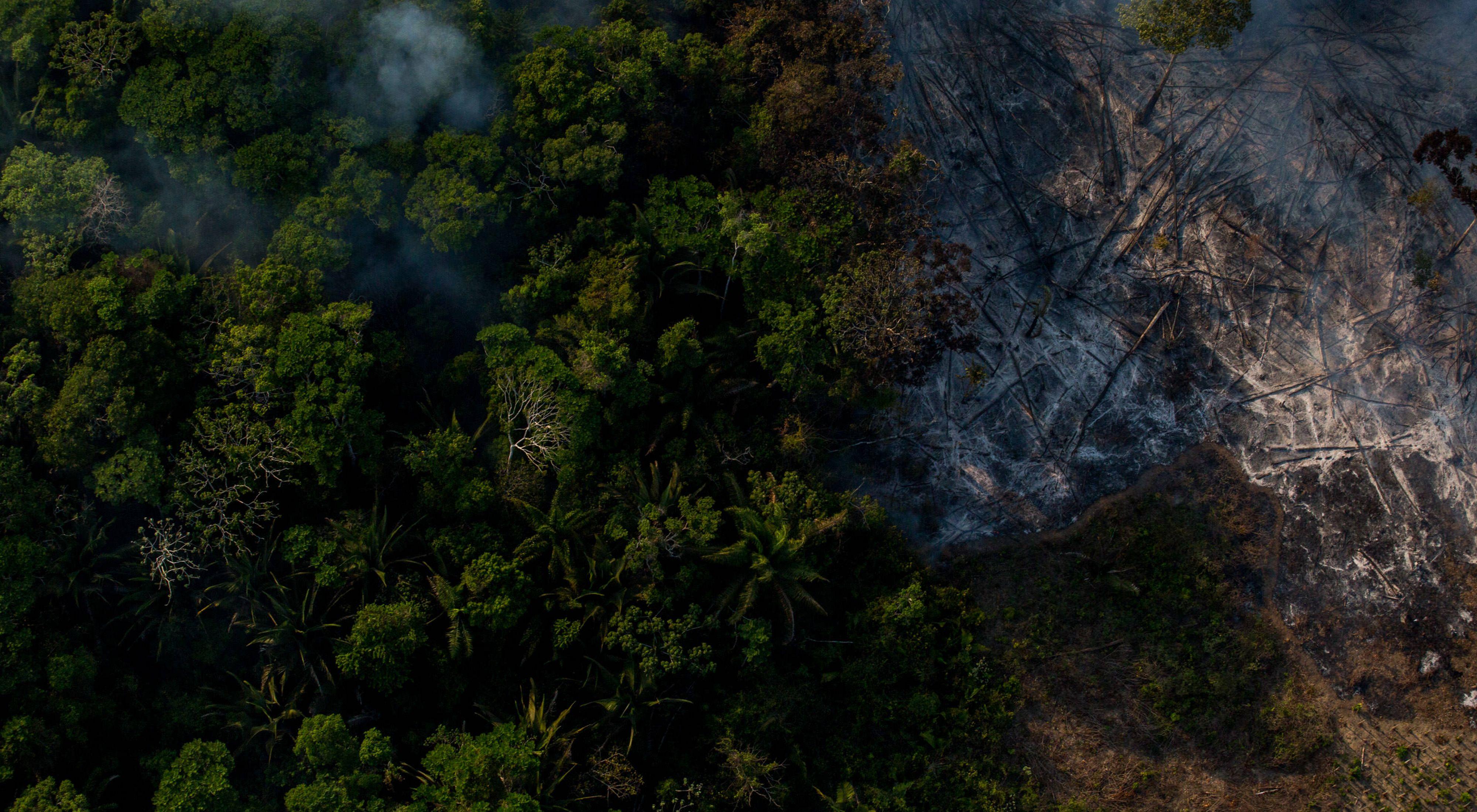 Incêndio florestal na Amazônia, próximo ao Rio Tapajós, no ano de 2017.